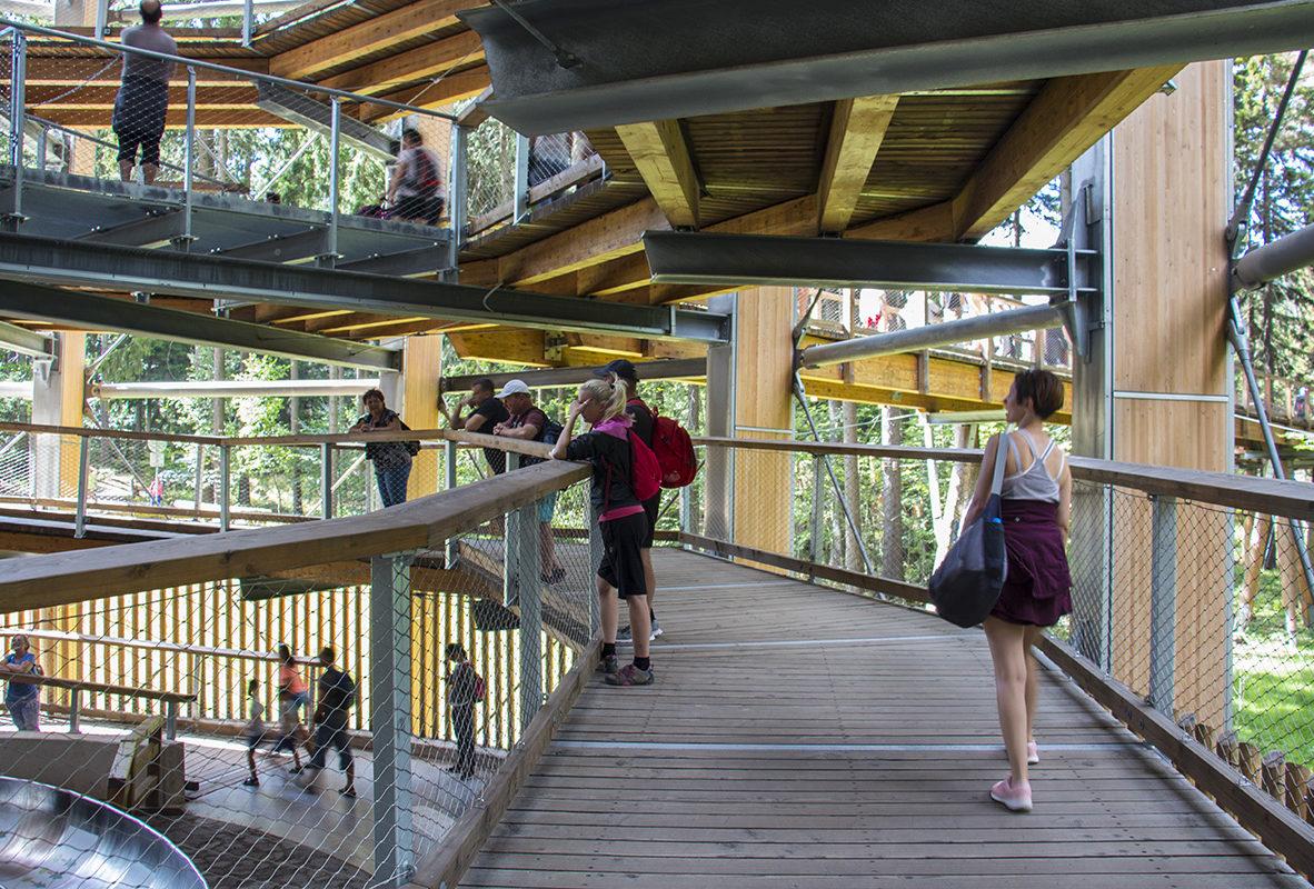Wycieczka – Ścieżka w Koronach Drzew – Czechy